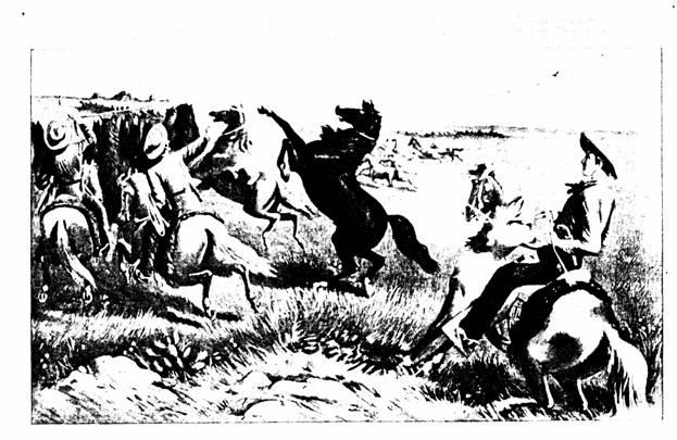 Ковбои. Охота на лошадей
