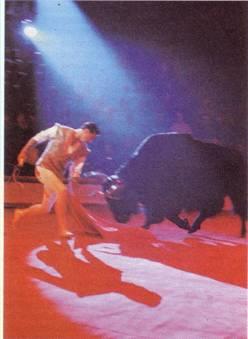 Виталий Тихонов. Коррида на арене цирка