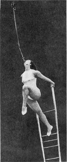 Наталья Твеленева