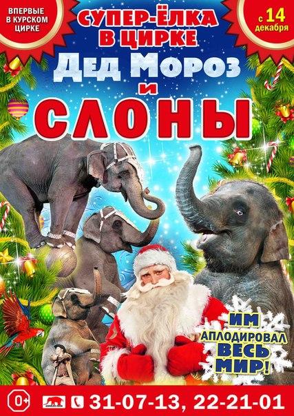 «Дед Мороз и СЛОНЫ» династии Корниловых поздравят гостей Курского цирка с  Новым годом