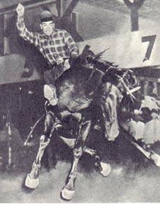 Ковбой из американского цирка Родео