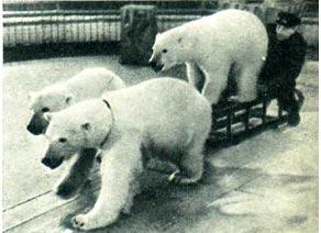 Эпизод из спектакля «Во льдах Арктики»
