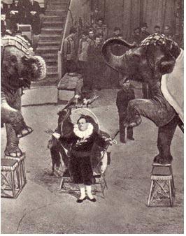 Юрий Дуров выступает на открытии Ярославского цирка. Фото Б. Минкина