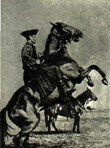 Большой табун в 50—60 животных удивительно согласованно выполняет требование табуншика, мгновенно повинуется взмаху его руки. Одного из мастеров конной дрессуры вы видите на этом снимке.