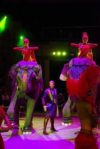 В Иваново впервые покажут Шоу «ИНДИ РА» династии Корниловых