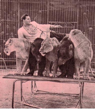 Не каждый дрессировщик может так довериться своим зверям