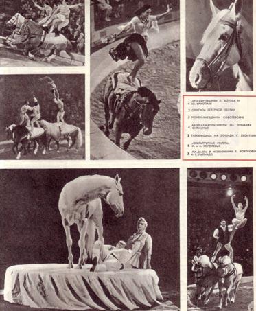 Конный цирк М. Туганова