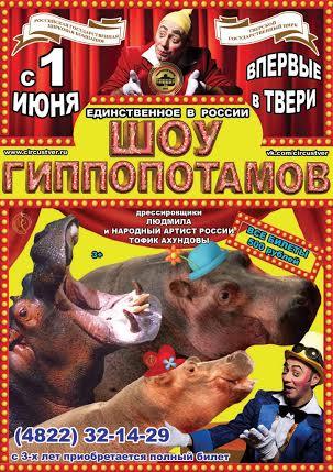 «Шоу гиппопотамов» Тофика Ахундова