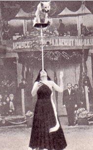 Тамара Александрова