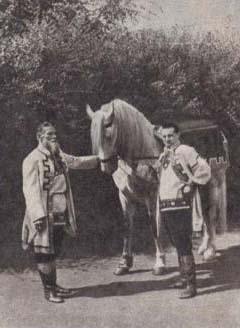 Дмитрий Косарев - ветеран конного цирка