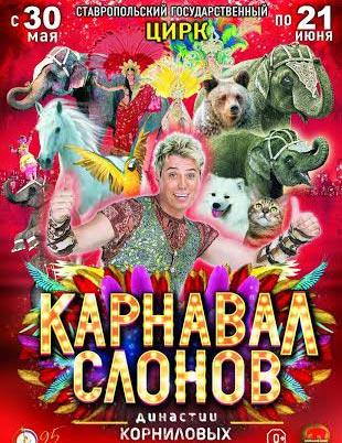 Впервые в Ставрополе покажут шоу