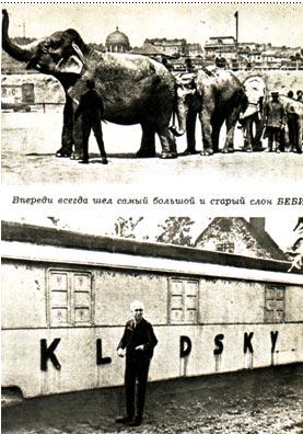 На фото. Впереди всегда шел самый большой слон Беби. Карел Клудски на отдыхе