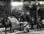 Кадыр Гулям от Беллея..jpg