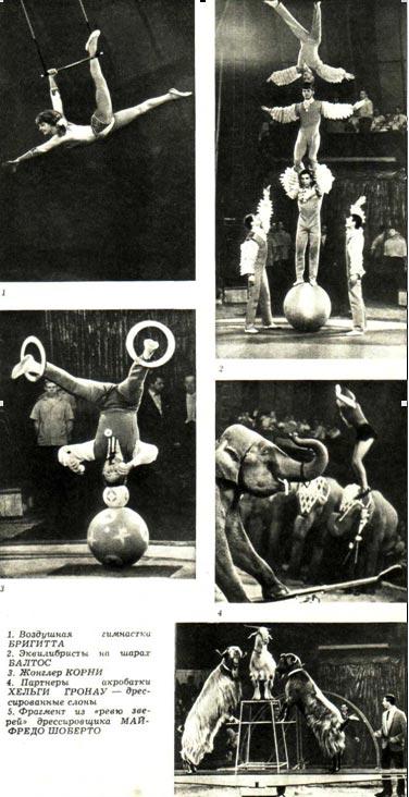 Воздушная гимнастка Бригитта. Эквилибристы на слонах Балтос. Жонглер Корни. Партерные акробата на слонах Хельги ГронауФрагмент из ревю зверей Майфредо Шуберто.