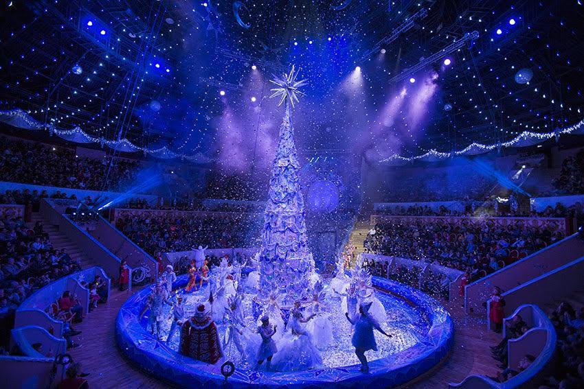 17 декабря, в Большом Санкт-Петербургском государственном цирке состоялась премьера нового циркового спектакля «Новогоднее шоу Гии Эрадзе», гастроли которого продлятся в Санкт-Петербурге по 15 января 2017 года.