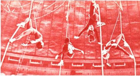 Гимнастки на канатах