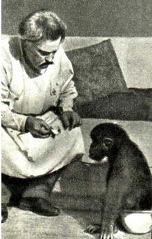 С любимой обезьянкой В. Л. Дуров