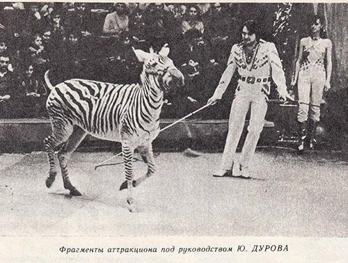 Фрагменты аттракциона Юрия Дурова