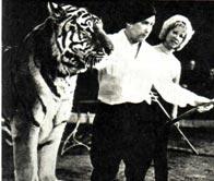 На этом снимке вы видите А. АЛЕКСАНДРОВА-ФЕДОТОВА Дайну Шоор вместе со мной и Каратом.