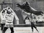 В.Беляков - медведи прыгуны.jpg