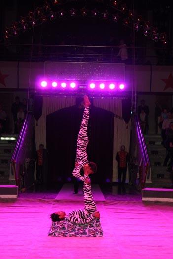 Мир сумок ижевск у цирка