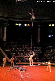 Атлетика акробатика гимнастика жонглирование эквилибристика клоунада дрессура иллюзия оригинальный жанр люди цирковые