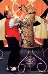 леопард4.jpg