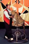 леопард7.jpg