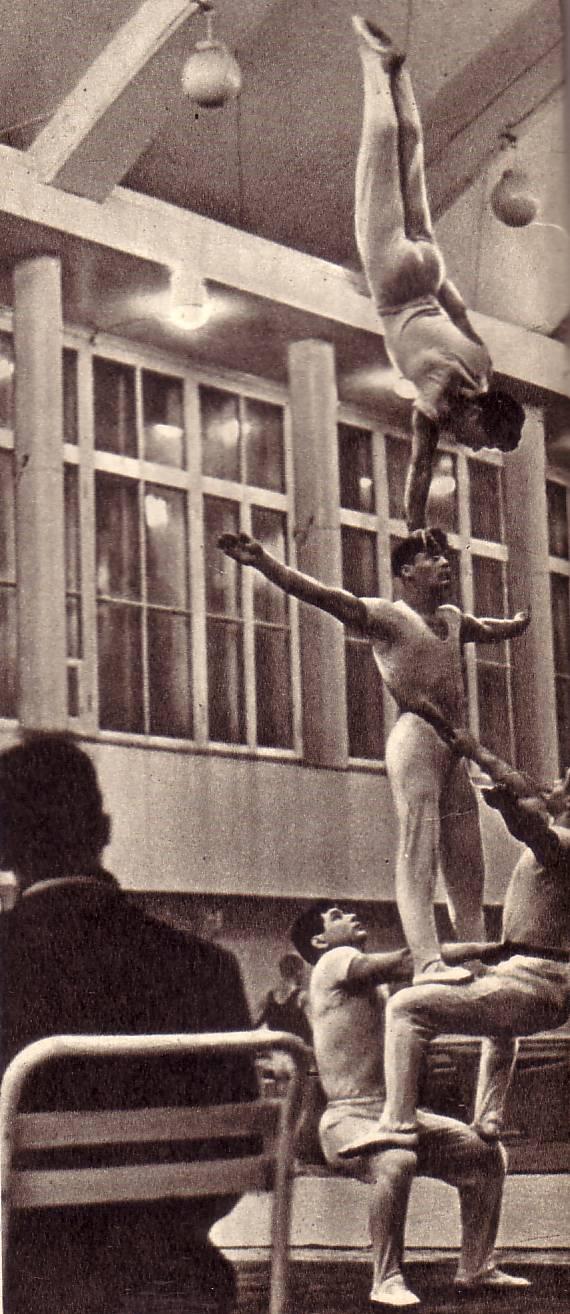 Все бывшие артисты цирка — прекрасные физкультурники