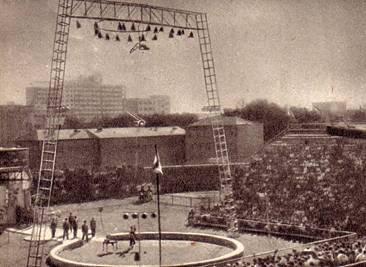 Общий вид цирка