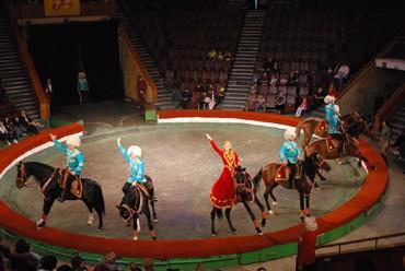 Стремительно по кругу несутся лошади