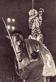 Гарри Белли со своим тигром-наездником