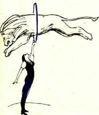 Говорят, что трюки — основа цирка