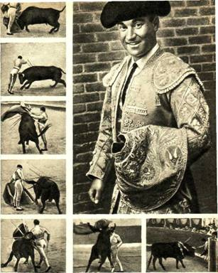 Костюм   современного  тореро   и   приемы   боя   с   быком