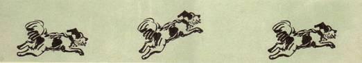 После того как собачка освоит хождение на задних лапах, научите ее выполнять пируэт