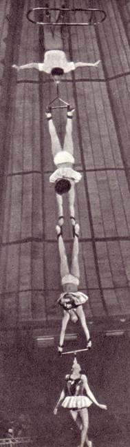 Воздушные гимнастки Салвец