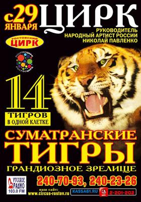 Цирковая афиша ростовского цирка