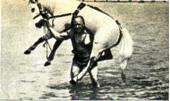 Самсон держит лошадь весом 375 кг