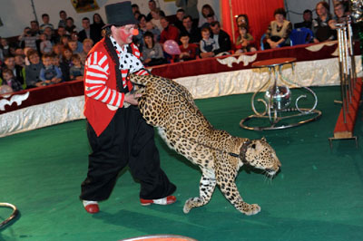 Цирк  в «Братеево»