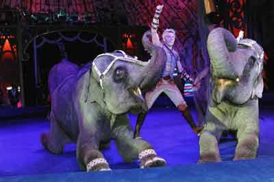 Андрей Дементьев-Корнилов со слонами