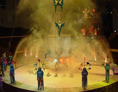 Цирк на воде Яны Шевченко