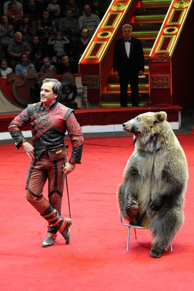 Серго Самхарадзе уникальный аттракцион «Буйволы и медведи»