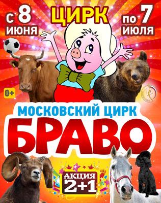 Во Владивостокском программа Московского цирка «Браво»