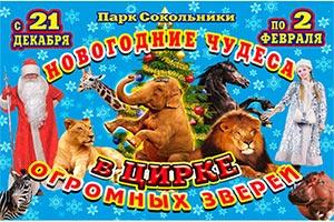 По 2 февраля в цирке огромных зверей в