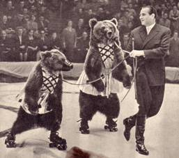 Медвежий цирк Валентина Филатова