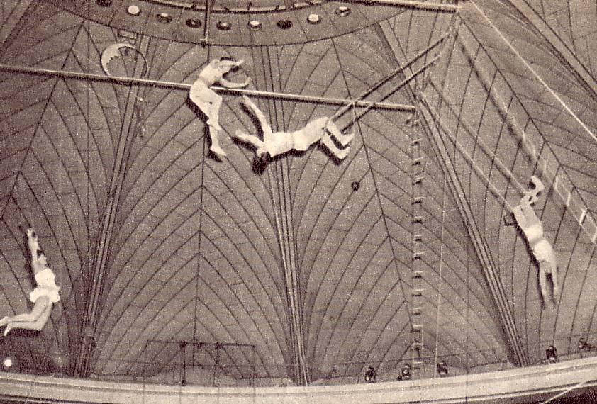Под куполом Бухарестского цирка4