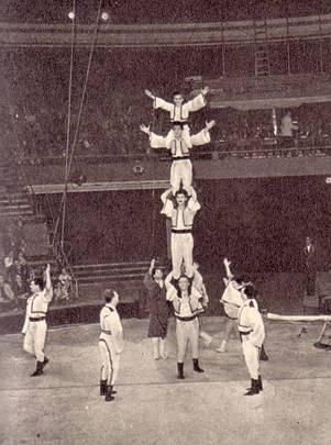Замечательное помещение нового Бухарестского цирка