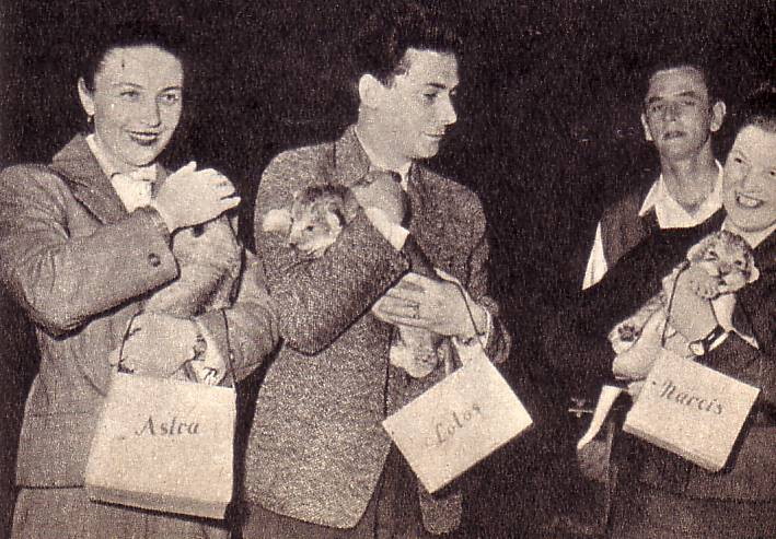 Трое львят-малышей уютно устроились на руках шефов цирка