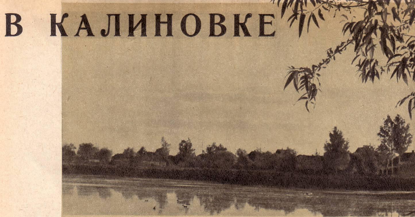 В Калиновке