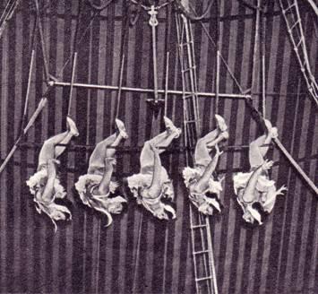 воздушные    гимнастки   под   руководством    Кати Райновой